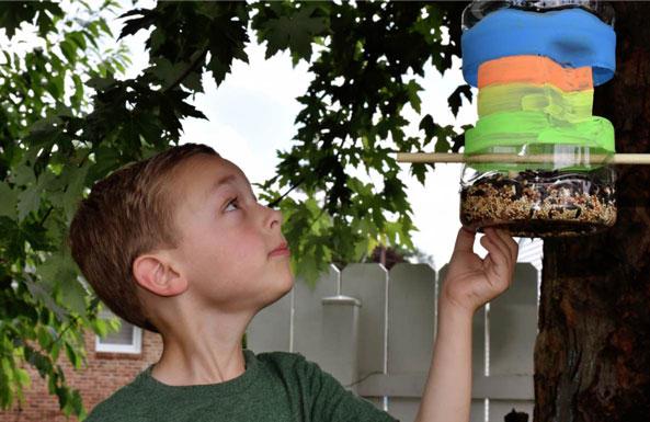 build a bird feeder diy activity for kids